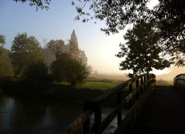 Misty morning over the common