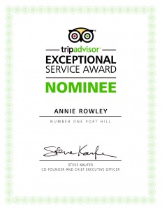 Exceptional_Service_Award_Nominee_06964527adc6